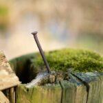 Ритуал на гвоздик для избавления от жировика