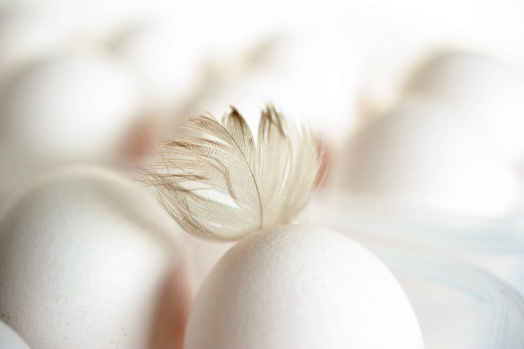 Ритуал с куриным яйцом от пяточной шпоры